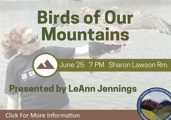 Birds of Our Mountains Past and Present June 25 2018 (Feature)