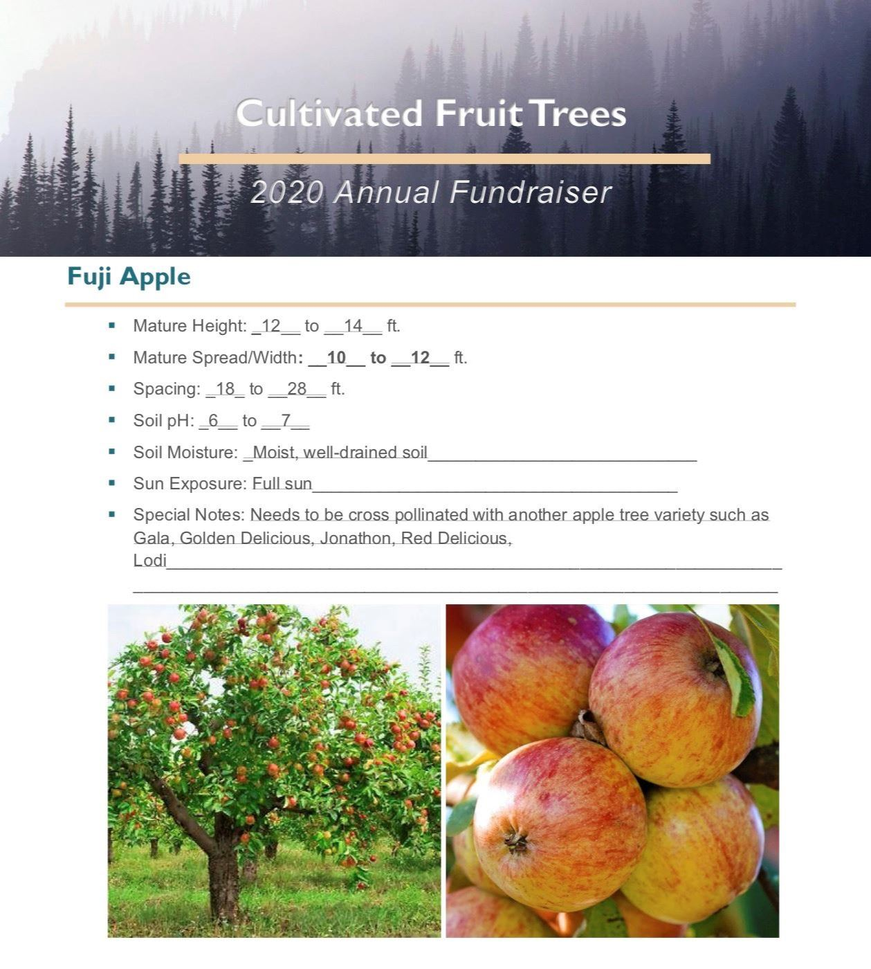 Brochure Template Draft_Cultivated_Fruit_Treespg1