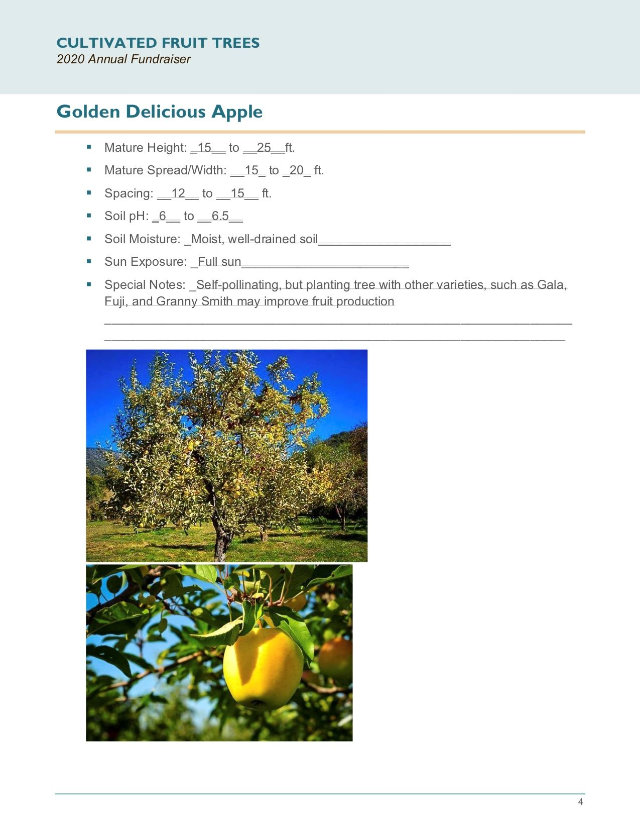 Brochure Template Draft_Cultivated_Fruit_Treespg4