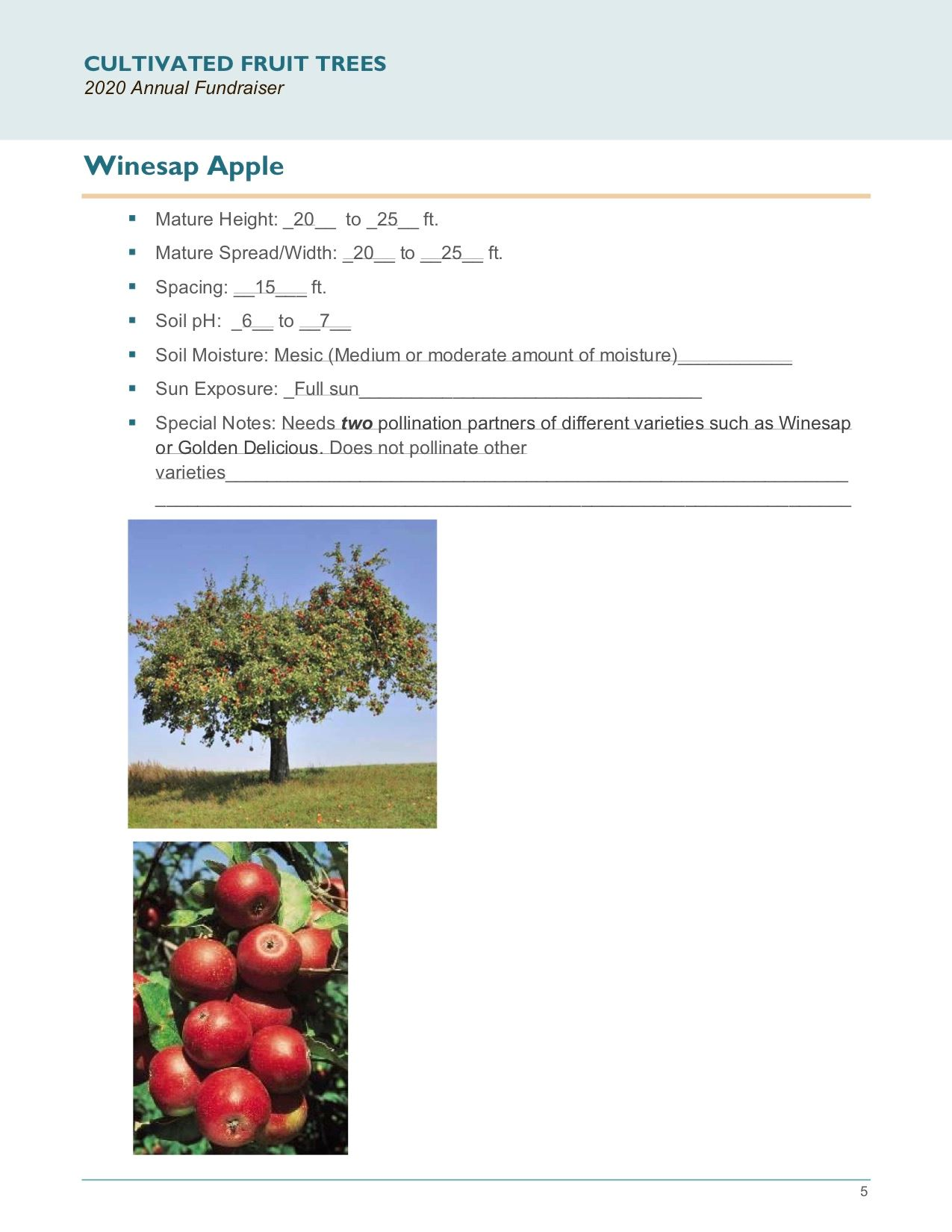 Brochure Template Draft_Cultivated_Fruit_Treespg5
