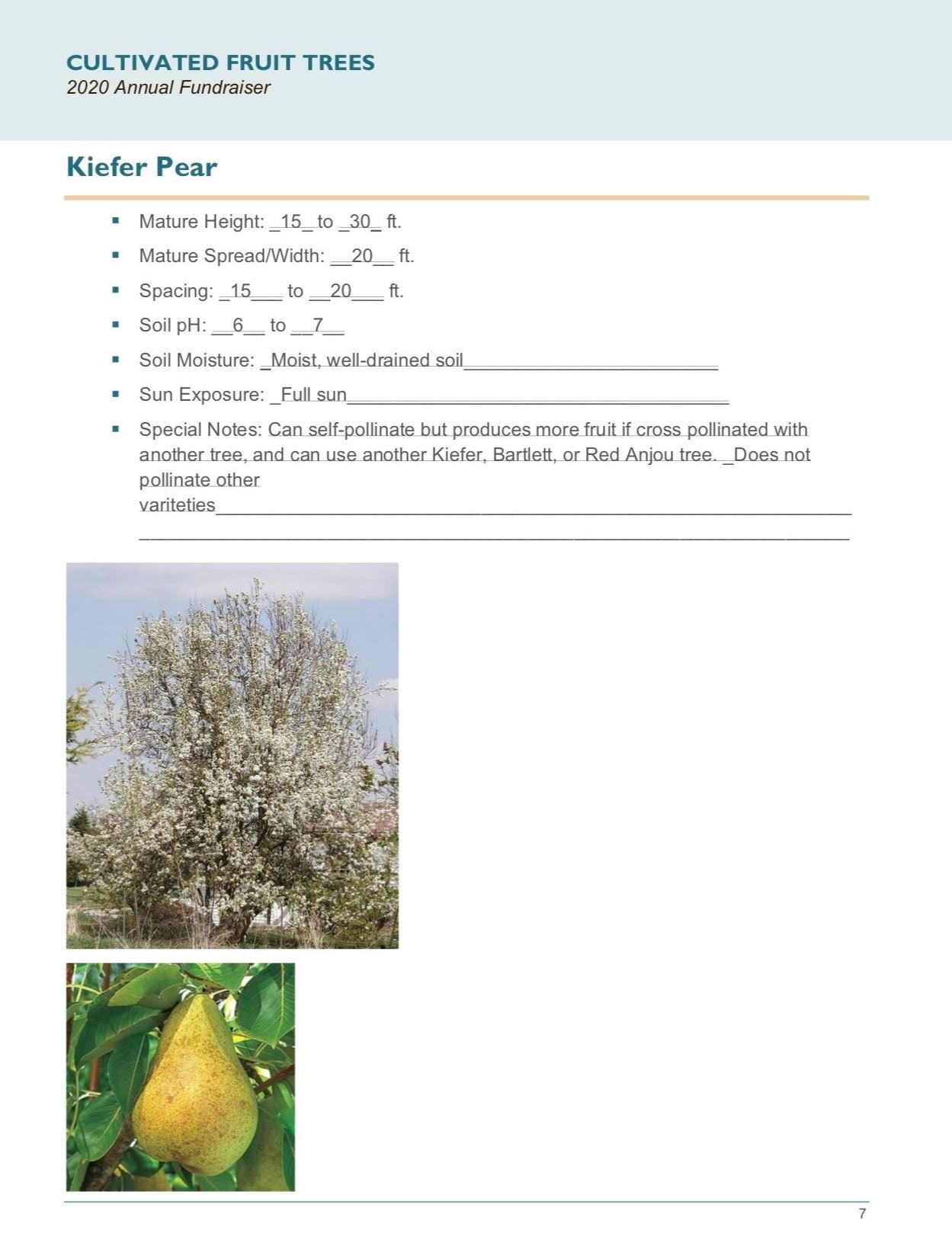 Brochure Template Draft_Cultivated_Fruit_Treespg7