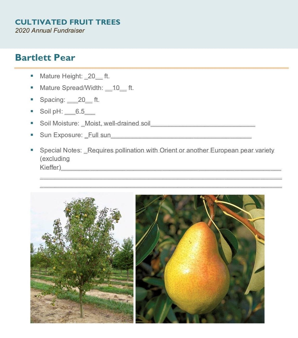 Brochure Template Draft_Cultivated_Fruit_Treespg6