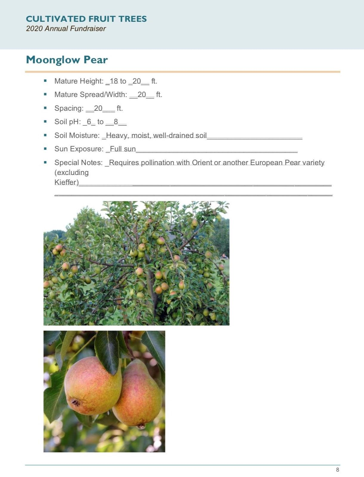 Brochure Template Draft_Cultivated_Fruit_Treespg8