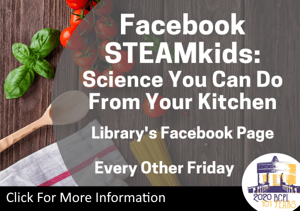 Facebook STEAMkids May 2020 (Feature)