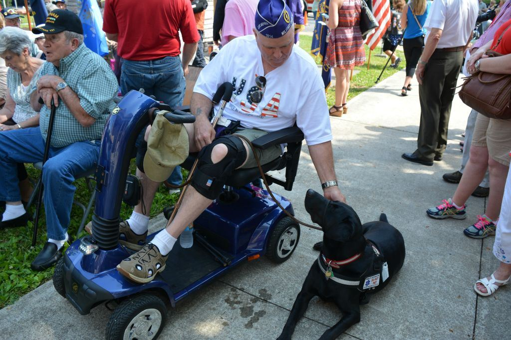 Veteran in motor chair with blacklab service dog