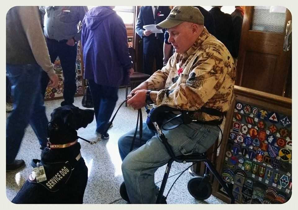 Man in walker chair sits looking at black labrador service dog